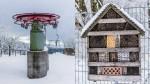 Winter auf dem Hoherodskopf